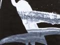 Ave.2008.Técnica-mixta-s-papel.415-x-295-cm-3
